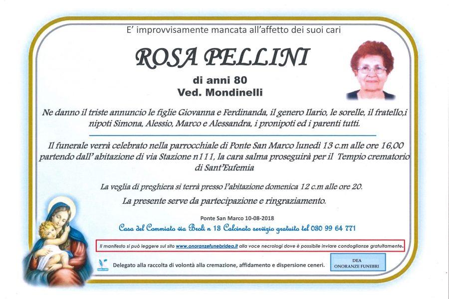 Rosa Pellini