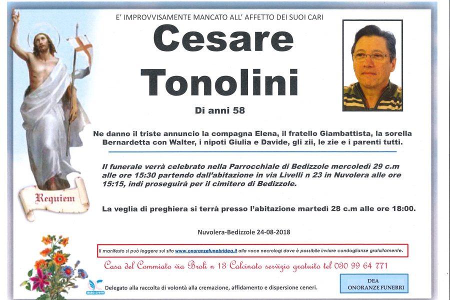 Cesare Tonolini