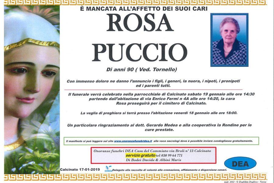 Rosa Puccio