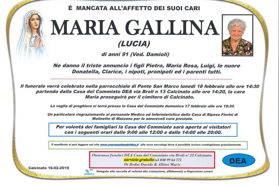 Maria Gallina