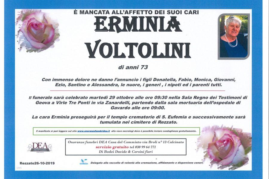Erminia Voltolini